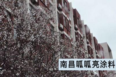 江西工业贸易职业技术学院猫先生案例